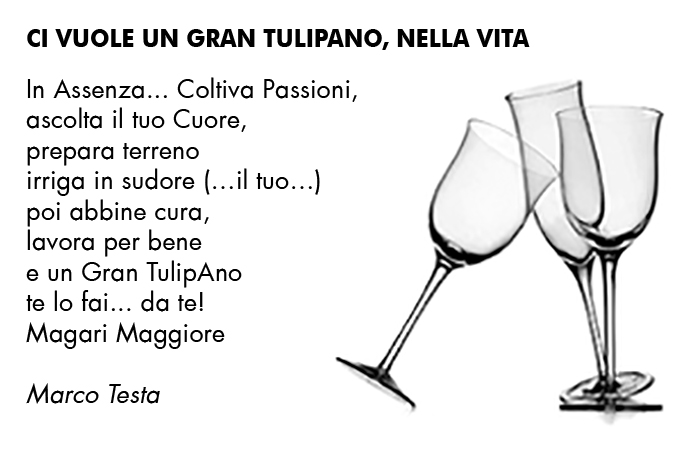 infografica poetica 002 di Marco Testa